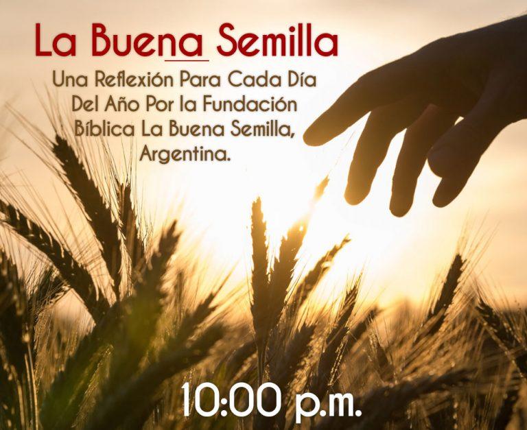 La-Buena-Semilla